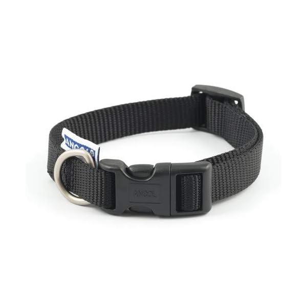 Ancol-Heritage-Nylon-Adjustable-Collar