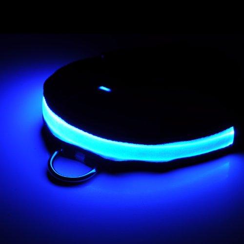 LED Hundehalsband mit LED-Licht in blau, 3 Leuchtmodi, Umfang regulierbar von 39cm – 47cm (Größe M), Leuchthalsband für Hunde mit Klippverschluss – Marke Ganzoo - 3