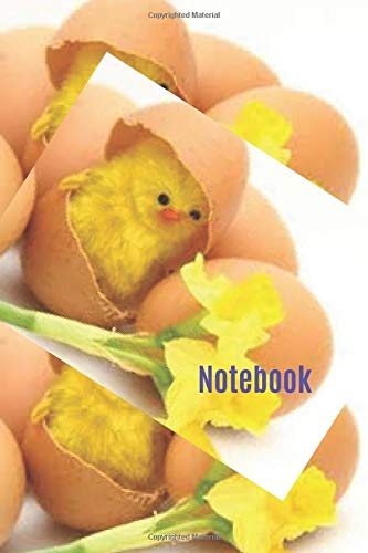 Notebook: 100 pages lined journal Baby Yellow Easter chicks
