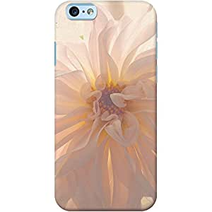 DailyObjects Buy Her Flowers Case For iPhone 6