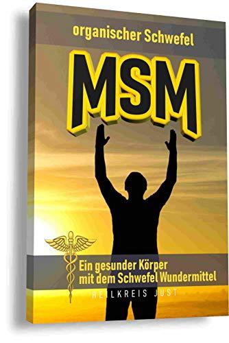MSM organischer Schwefel Ein gesunder Köper mit dem Schwefel Wundermittel: Das Handbuch für das Phänomen MSM Schwefelpulver (Die Vitamin Arthritis Für Heilung)