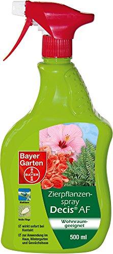 Bayer Garten Zierpflanzenspray Decis AF Insektenabwehr draußen, Gelb, 500 ml