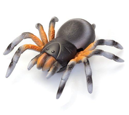 Tobar Wall-Ruta de la araña de juguete