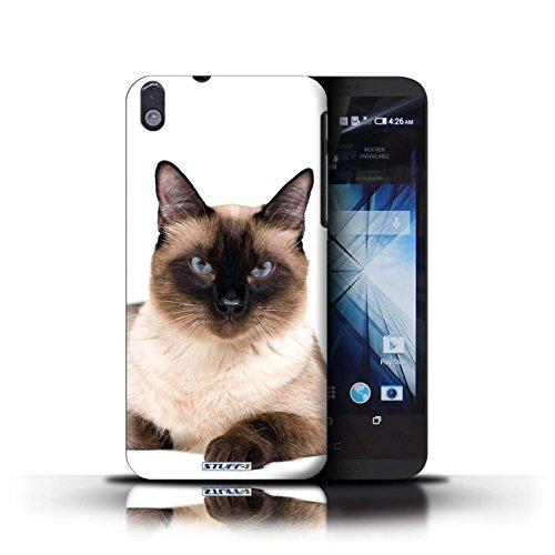 Kobalt® Imprimé Etui / Coque pour HTC Desire 816 / Scottish Fold conception / Série Espèces de chats Siamois