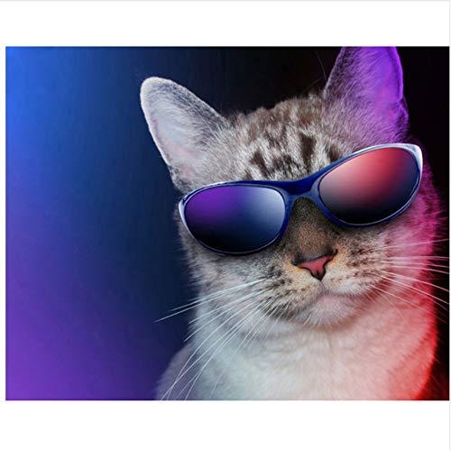 3D Coole Katze, Sonnenbrille Malen Nach Zahlen DIY Moderne Wandkunst Bild Oder Erwachsene Kinder Anfänger Acrylfarbe Auf Leinwand Handgemalt Home Decoration Geschenk 40X50Cm Rahmenlos