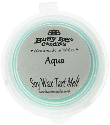 Scheda dettagliata Busy Bee Candles-Tart in Cera, Motivo Gelato Che Si scioglie, Colore: Blu Acqua, Set da 6