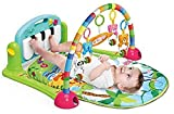 Baby Play Gyms - Best Reviews Guide