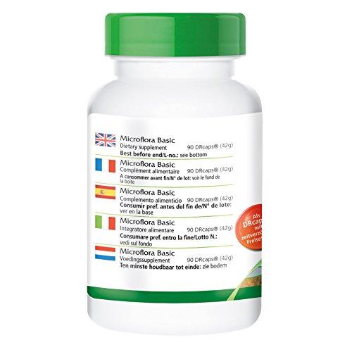 Microflora Basic – GROSSPACKUNG für 3 Monate – 90 DRCaps® – enthält 6 wohlwollende Bakterienstämme mit mind. 19 Mrd. Keimen pro DRCap