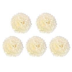 Ivory : Flower Balls - TOOGOO(R) 5pcs*14 inch (35 cm) Tissue Paper POMPOMS Flower Balls Home Decor Festive & Party Supplies Wedding Favorsivory