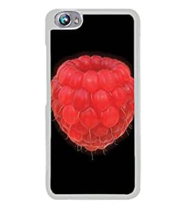 YuBingo Micromax Canvas Fire 4 A107 2D Designer Phone Back Case Cover ( The Red Berry )