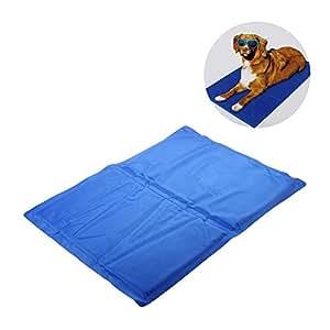 Best Dog Cooling Mat Uk