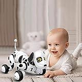 KOBWA télécommande Robot Dog, sans Fil, Smart Robot Robot Chien, Marche, Parle, Sing et mathématiques pour garçons/Filles (Blanc)