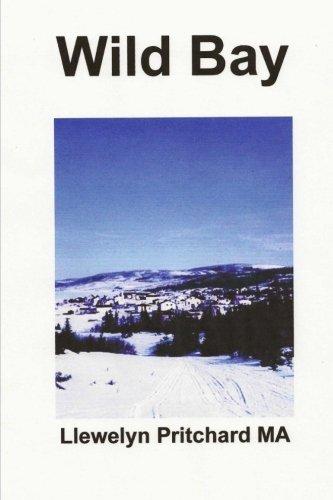 Wild Bay (Port Hope Simpson Mysteries, Band 6) (Port-polnisch)