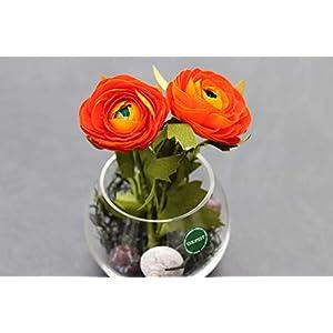 Handgefertigte Ranunkel aus Krepppapier in Glasvase/haltbare Frühlingsblume