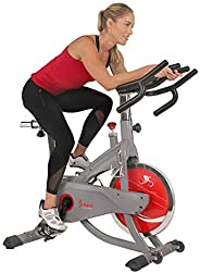Sunny Health & Fitness Unisex Adult SF-B1711 Aeropro Indoor Cycling Bike - Grey, One