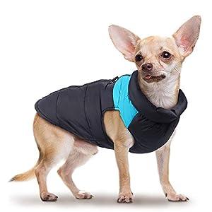 Impermeabili per cani Chihuahua