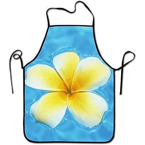 dfhfdshfdshsd dfhfd GrillschürzenSchürzenbevoicep Kitchen Chef Apron-Black Border Waist Adjustable Unisex Chef Aprons-Blue Lagoon and Hawaiian Yellow Plumeria Flower Women's Fashion - Blue Womens Grafik