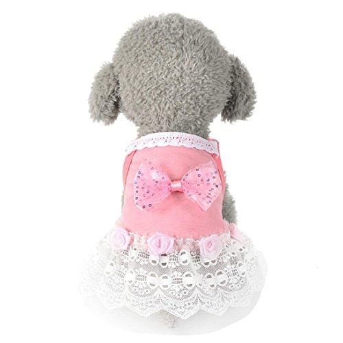 Kleine Hund Katze Bowknot Tutu Kleid Haustier Welpen Spitze Rock Hund Prinzessin Kostüm Nette Katze Frühling Herbst Kleidung Kleidung (M, Rosa)
