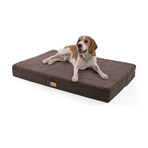 brunolie Balu Hundebett, waschbar, orthopädisch und Rutschfest, Hundekissen mit kuscheligem Plüsch, Größe L, Dunkelbraun