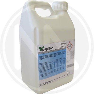 antialghe-alghicida-per-piscine-liquido-5-lt-piscina