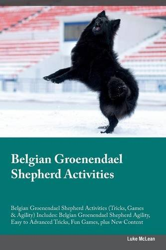 Belgian Groenendael Shepherd Activities Belgian Groenendael Shepherd Activities (Tricks, Games & Agility) Includes…