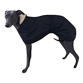 4 colours fleece lined waterproof dog coat 5 sizes with adjustable clip strap whippet/greyhound/lurcher/italian greyhound/sighthound 4 COLOURS Fleece Lined Waterproof Dog Coat 5 SIZES with Adjustable Clip Strap Whippet/Greyhound/Lurcher/Italian Greyhound/Sighthound 41WKlb6j2AL