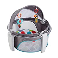 Fisher-Price FWX16 On-The-Go Baby Dome, New-Born Baby Cot or Travel Bassinet, Suitable from Birth