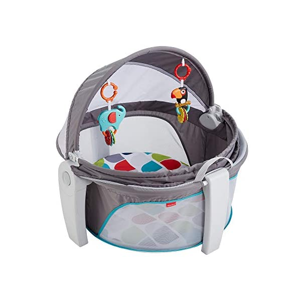 Fisher-Price FWX16 On-The-Go Baby Dome, New-Born Baby Cot or Travel Bassinet, Suitable from Birth Fisher-Price  two-in-one, play space and napping spot   Can be used indoors or out    Canopy protects against the sun and bugs  1