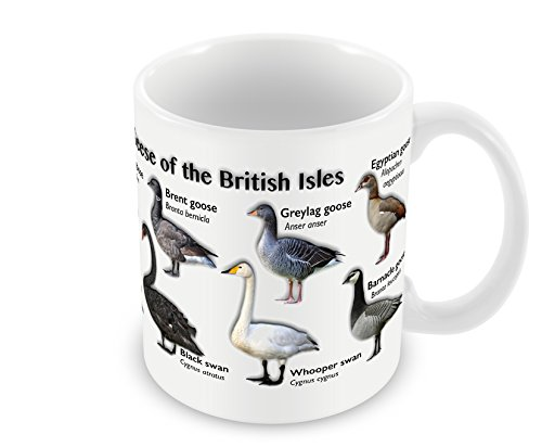 mug-showing-the-swans-geese-of-the-british-isles