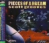 Songtexte von Scott Grooves - Pieces of a Dream