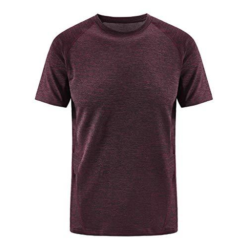 infarbige Schnell trocknende Kleidung, Herren Kurzärmliges T-Shirt Sommer Grundlegendes Hemd Sport Oberteil Rundhals-Tops Einfacher Stil Laufen Bluse Weste ()