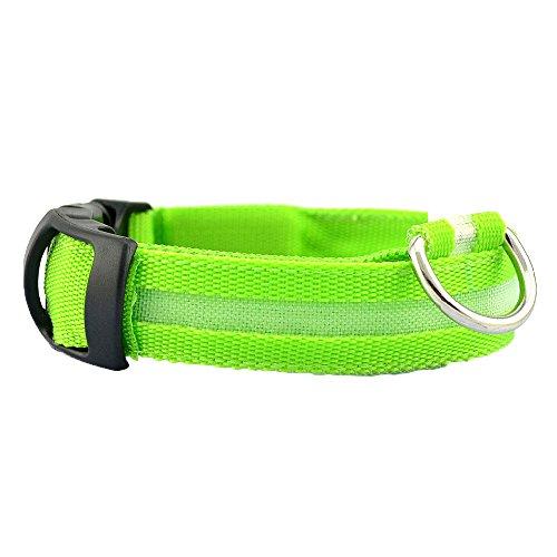 TFENG Leuchtendes Halsbänder, Blinkender LED Hunde Sicherheits Halsband, Nylon Leuchtender Nacht Hundehalsband (Grün, Größe XL)
