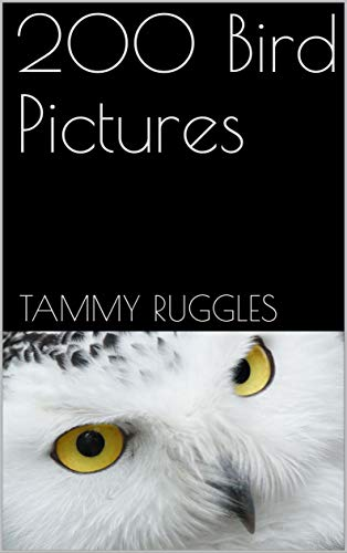 200 Bird Pictures (English Edition)