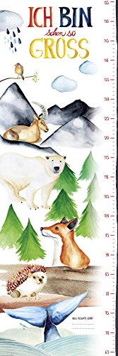 Preisvergleich Produktbild Messlatte Poster / Kinderzimmer Wandbild für Mädchen & Jungen / Kindermesslatte 30x 91,5cm - Close Up®