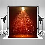 Fotografie-Hintergrund/Microfiber, Ausgangslicht-Roter Teppich-Stadiums-Fotografie-Hintergrund, Partei-Stütze-Studio, Druckhintergrund - Studio-Studio-Hintergrund-Tuch, 150x200cm