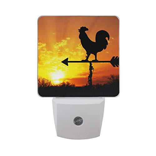 DFISKK Nachtlicht Set of 2 Rooster Weather Vane On Arrow Sunrise with Bright Sunshine Color Cloud Early Morning Wake Up Concept Auto Sensor LED Dusk to Dawn Night Light Plug in Indoor for Adults Le Rooster Set