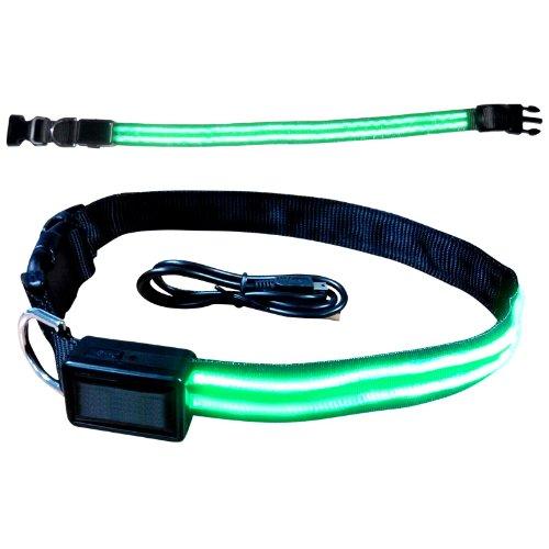 hundeinfo24.de 2-TECH wiederaufladbares sehr helles LED Hundehalsband in GRÜN Größe L (Halsumfang 35 bis 55cm) 4.Generation mit USB Micro Lade-Schnittstelle und IP44