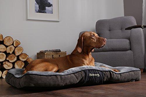 Scruffs 1162 Chester Hunde Kissen, L, grau - 5