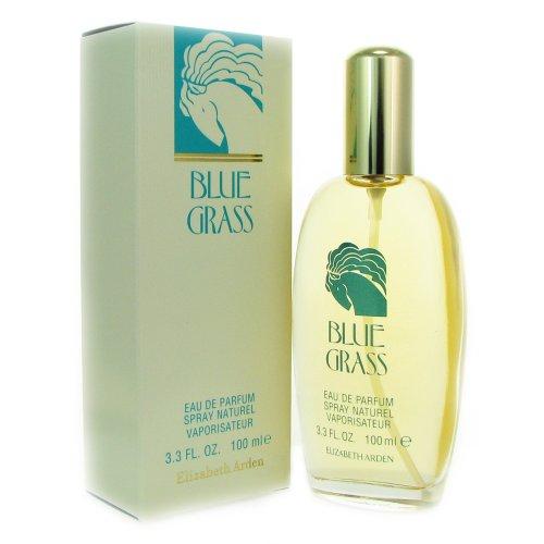 elizabeth-arden-blue-grass-eau-de-parfum-spray-100ml