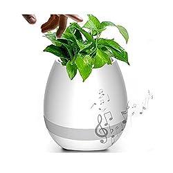 Music Flowerpot Speaker