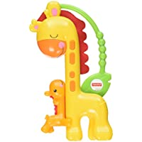 Fisher Price Knuffel Giraffe