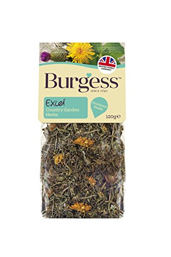 burgess-excel-country-garden-herbs-snacks-120-g-pack-of-5