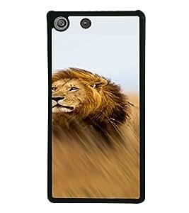 PrintVisa SONM5-Animal Lion Design Metal Back Cover for Sony Xperia M5 Dual E5633 E5643 E5663, Sony Xperia M5 E5603 E5606 E5653