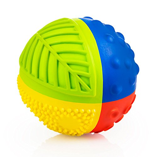 CaaOcho Baby - Bio Motorikspielzeug - Sensory Ball Regenbogen aus Naturkautchuk - Babyspielzeug Ab 6 Monate - Das Spielzeug Ist Frei Von Chemischen Zusatzstoffen BPA, PVC und Phthalate - 8 cm (Zu Mich Ballerinas)