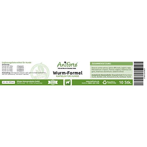 AniForte Wurm-Formel 10 Kapseln- Naturprodukt für Hunde -