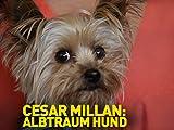 Cesar Millan: Albtraum Hund [dt./OV]
