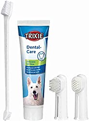 Trixie 2561 Dental Care Kit, Cane