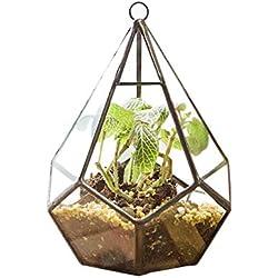 Glas-Blumentöpfe, modern, künstlerisch, klar, geometrisches Terrarium, 5 Oberflächen, Diamant-Suchkulenten, Farn, Moos, Terrarium mit Schlaufe zum Aufhängen, Kupfer