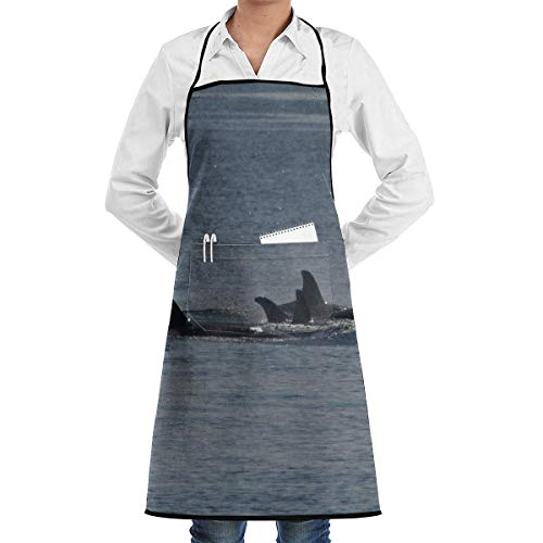 ca Pod Apron Kitchen Cooking Commercial Restaurant Apron for Women and Men-Perfect for Gifts ()