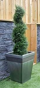Best Artificial (TM) 90cm 3m Cedar spirale topiaire arbre Alt buis Buxus Lot de * * * * * * * * * * * * * * * * UV Fade protégé * * * * * * * * * * * * * * * *